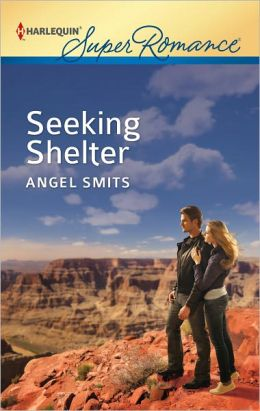 Seeking Shelter (Harlequin Super Romance Series #1805)
