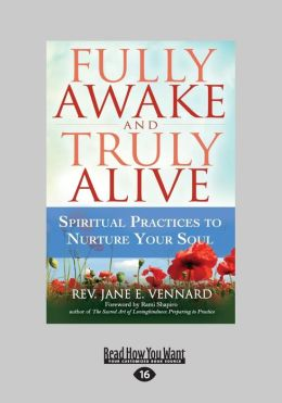 Fully Awake and Truly Alive: Spiritual Practices to Nurture Your Soul (Large Print 16pt)