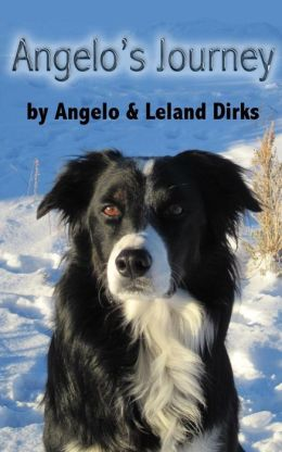 Angelo's Journey : A Border Collie's Quest for Home