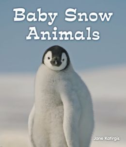 Baby Snow Animals