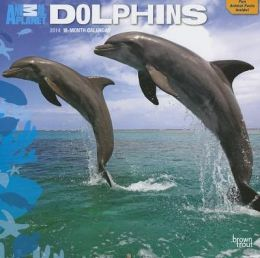 2014 Animal Planet Dolphins Square 12x12