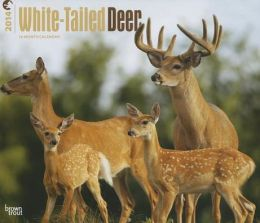 2014 White-Tailed Deer Deluxe Wall Calendar