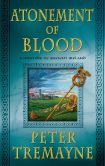 Book Cover Image. Title: Atonement of Blood:  A Mystery of Ancient Ireland, Author: Peter Tremayne