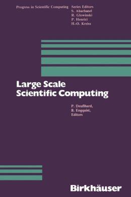 Large Scale Scientific Computing
