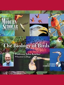 Biology Of Birds