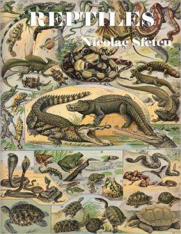 Reptiles - Crocodiles, Alligators, Lizards, Snakes, Turtles