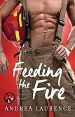 Book Cover Image. Title: Feeding the Fire, Author: Andrea Laurence