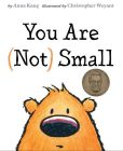 Book Cover Image. Title: You Are (Not) Small, Author: Anna Kang