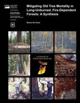 Mitigating Old Tree Mortality in Long-Unburned, Fire-Dependent Forests: A Synthesis