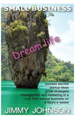 SMALL BUSINESS: Dream life, 6 figure success secrets startup ideas, guide, strat: SMALL BUSINESS: Dream life, 6 figure success secrets startup ideas, guide, strategies for management and marketing of a Low Tech service business on 4 hour work weeks from h