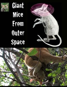 Giant Mice From Outer Space: (The Adventures of Finny the City Cat)