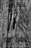 Secret Hollows: A Mary O'Reilly Paranormal Mystery - Book Seven