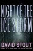 Book Cover Image. Title: Night of the Ice Storm, Author: David Stout