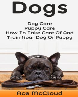 how to care for dogs