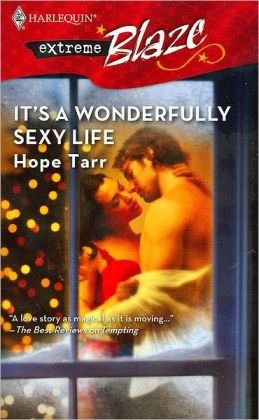 It's a Wonderfully Sexy Life (Harlequin Blaze Series #293)