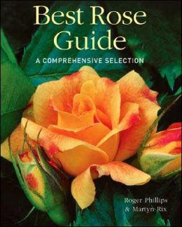 Best Rose Guide: A Comprehensive Selection