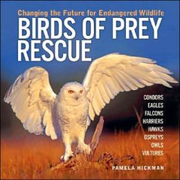 Birds of Prey Rescue: Changing the Future for Endangered Wildlife