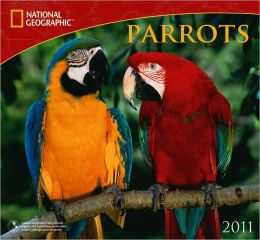 2011 National Geographic Parrots Wall Calendar
