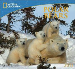2011 National Geographic Polar Bears Wall Calendar