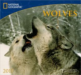2011 National Geographic Wolves Wall Calendar