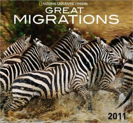 2011 Great Migrations - National Geographic Wall Calendar