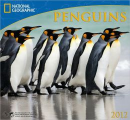 2012 Penguins - National Geographic Wall Calendar