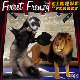 2012 Ferret Frenzy Wall Calendar