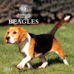 2014 AKC Beagles Wall Calendar