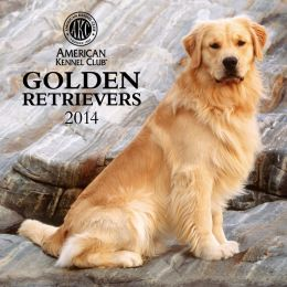 2014 AKC Golden Retrievers Wall Calendar