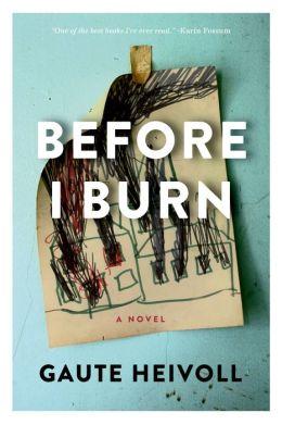 Before I Burn: A Novel