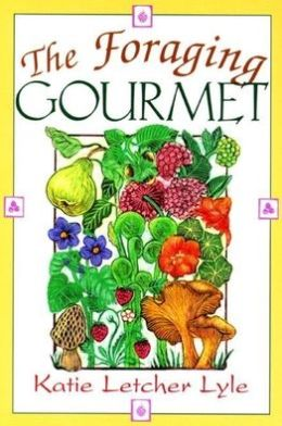 Canoe Camping: An Introductory Guide