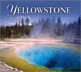 Yellowstone Impressions