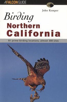 Birding Northern California