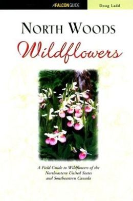 Adventure Travel Tips: Advice for the Adventure of a Lifetime
