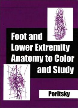Foot & Lower Extremity Anatomy to Color & Study