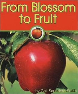 From Blossom to Fruit