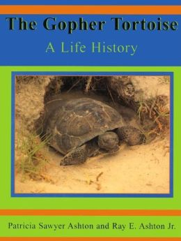 The Gopher Tortoise: A Life History