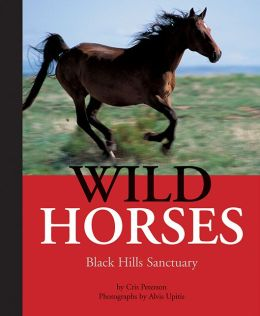 Wild Horses: Black Hills Sanctuary