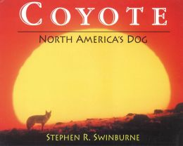 Coyote: North America?s Dog