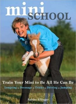 Mini School: Train Your Mini to Be All He Can Be