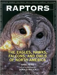 Raptors: The Eagles, Hawks, Falcons, and Owls of North America