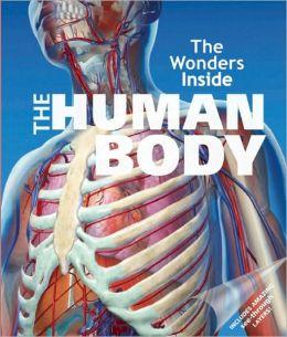 The Wonders Inside: The Human Body