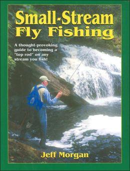 SMALL STREAM FLY FISHING, SB