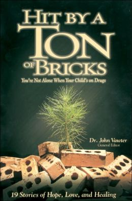 Hit by a Ton of Bricks: You're Not Alone when Your Child's on Drugs