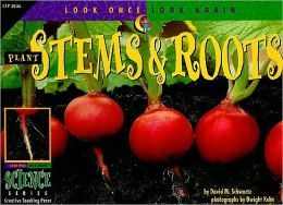 Plant Stems and Roots