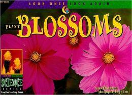 Plant Blossoms
