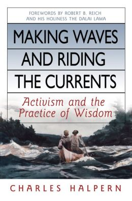 Making Waves and Riding the Currents: Activism and the Practice of Wisdom