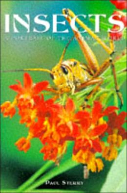 Insects: A Portrait of the Animal World