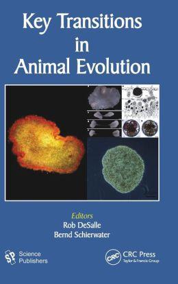Key Transitions in Animal Evolution