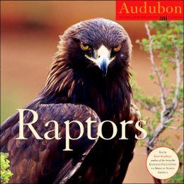 2008 Audubon Raptors Wall Calendar